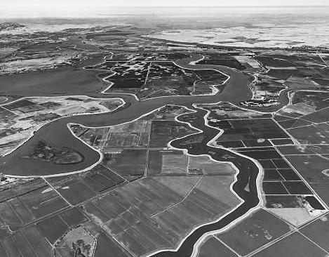Aerial shot of waterways snaking through farmland.